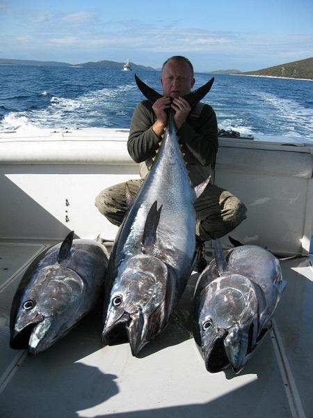 Big game fishing croatia slatkovodni ribi iz moskve for Fishing in croatia