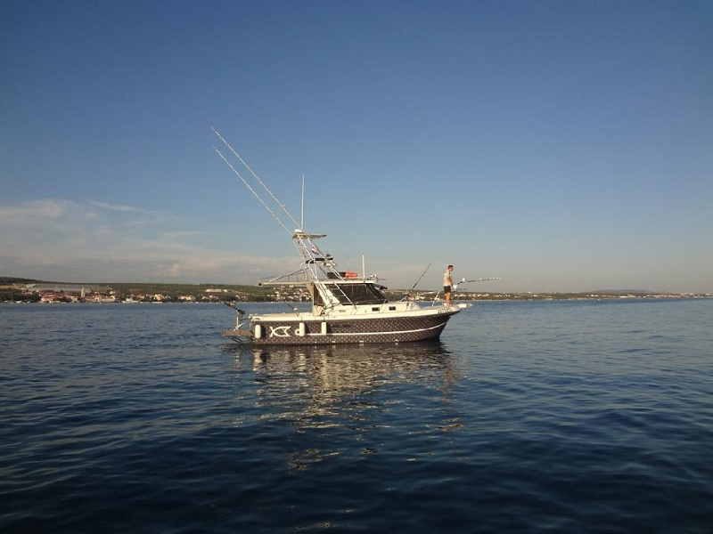 Megabite offshore fishing boat 03