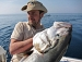 Amberjack- how to fish in Croatia